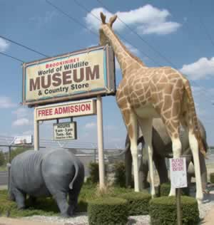 Brookshire's World of Wildlife Museum & Country Store on Old Jacksonville Highway and Loop 323, Tyler, Texas