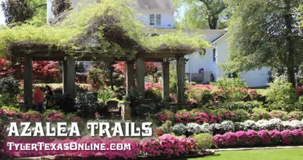 2019 Tyler Texas Azalea And Spring Flower Trails March 22 April 7