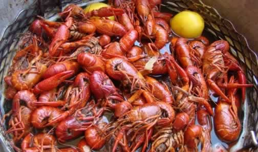 Boiled crawfish ... ready to enjoy!