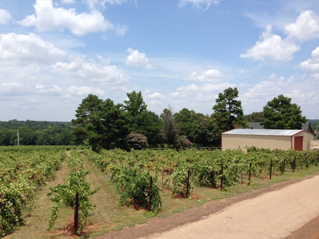 Kiepersol Winery in Tyler Texas