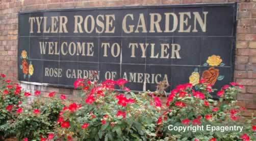Municipal Rose Garden, Tyler, Texas