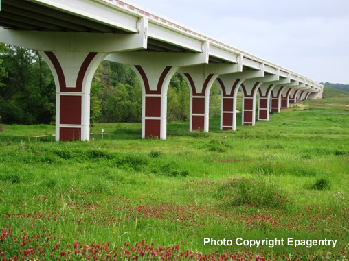 Overpass on Toll Loop 49 near Old Jacksonville Highway with wildflowers in bloom