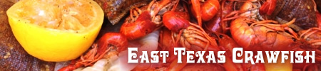 Crawfish and Tyler and East Texas