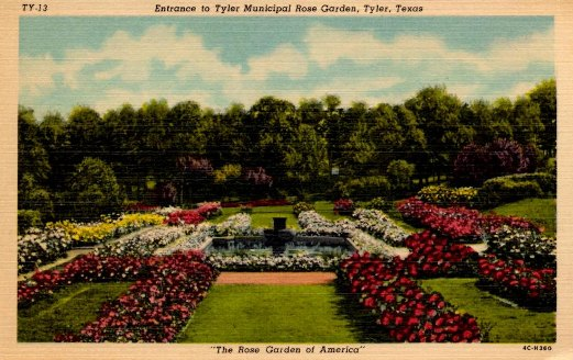 "Historic postcard ""Entrance to the Tyler Municipal Rose Garden, Tyler, Texas"""