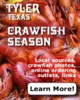 Crawfish season in Tyler Texas ... local East Texas sources, crawfish photographs, online crawfish ordering outlets, links ... click to learn more!